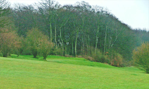 Chartridge Park Golf Club - hole 5