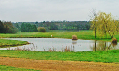 Chartridge Park Golf Club - hole 10